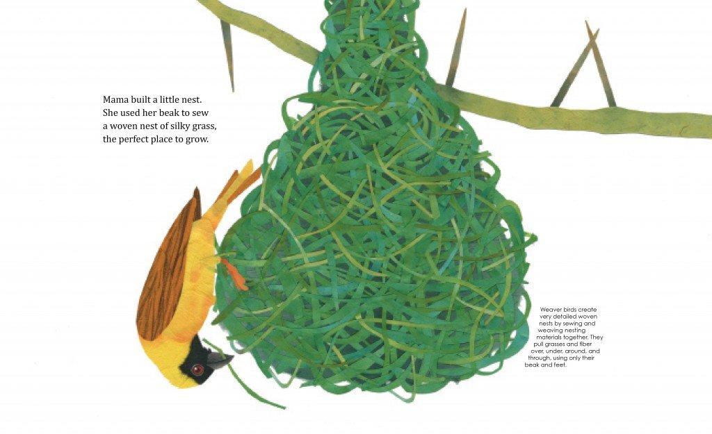 Intr-sprd-Mama-Built-Nest.jpg